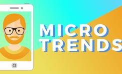 A Mega Idea: The Microtrend